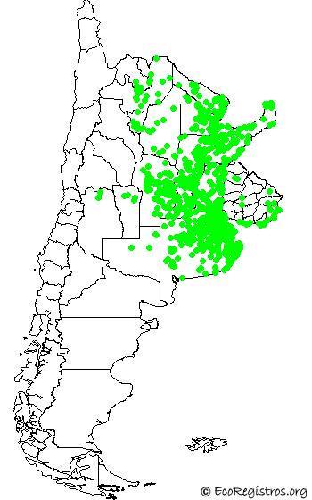 mapaespeciebyid - CARACOLERO(Rostrhamus sociabilis)