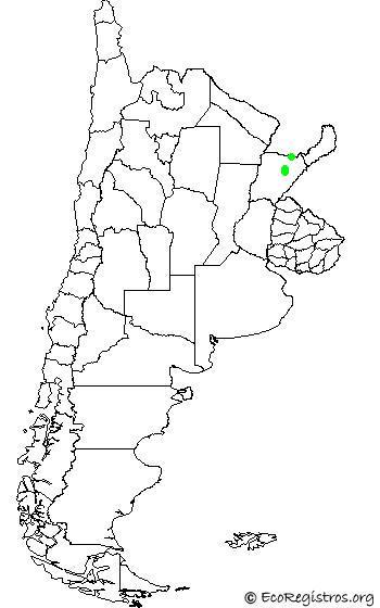 mapaespeciebyid - MARTÍN PESCADOR ENANO (Chloroceryle aenea)
