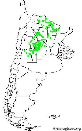 mapaespeciebyid - HORNERITO COPETÓN (Furnarius cristatus)